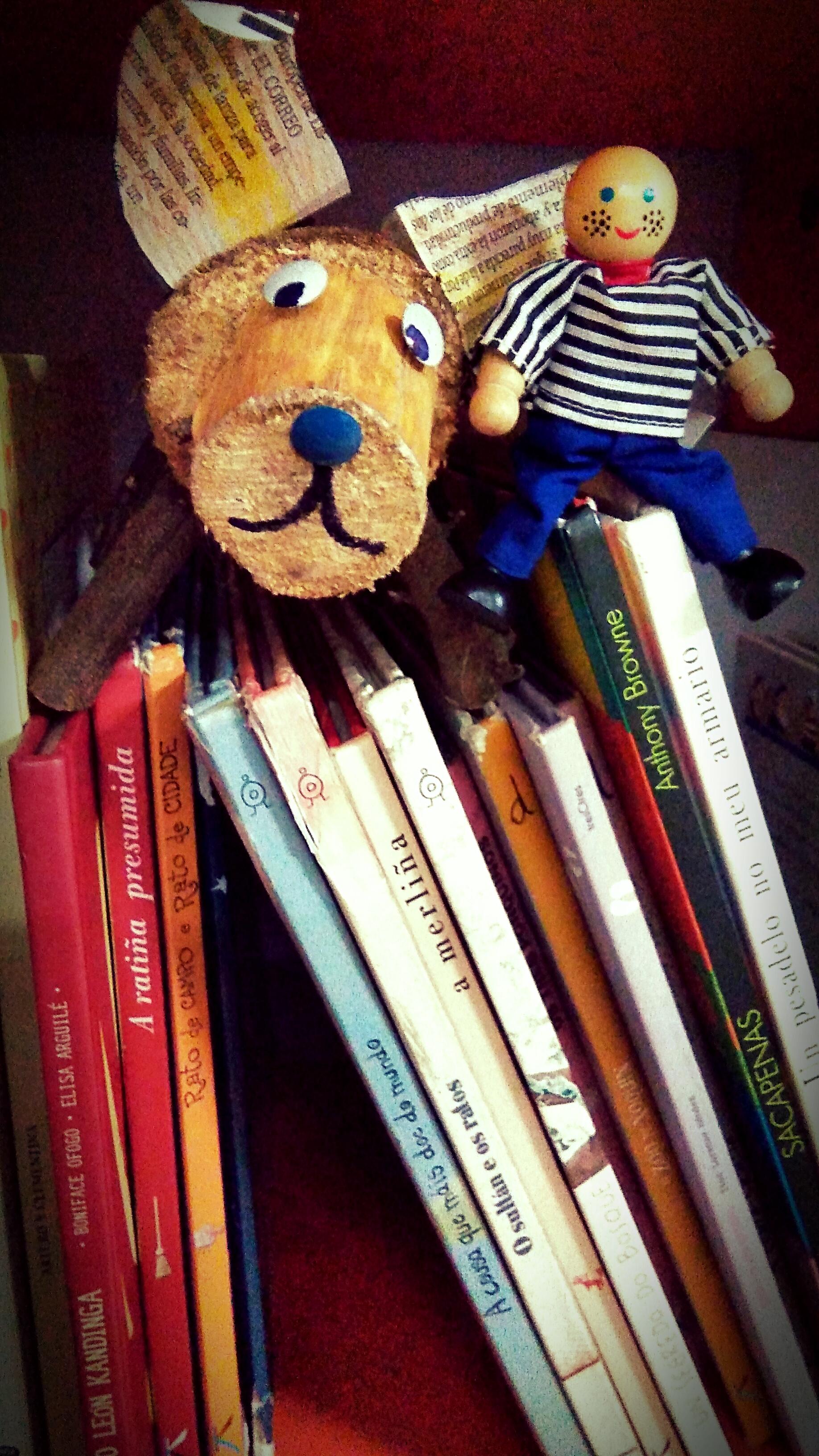 Xestión de equipamentos e programas de promoción da lectura